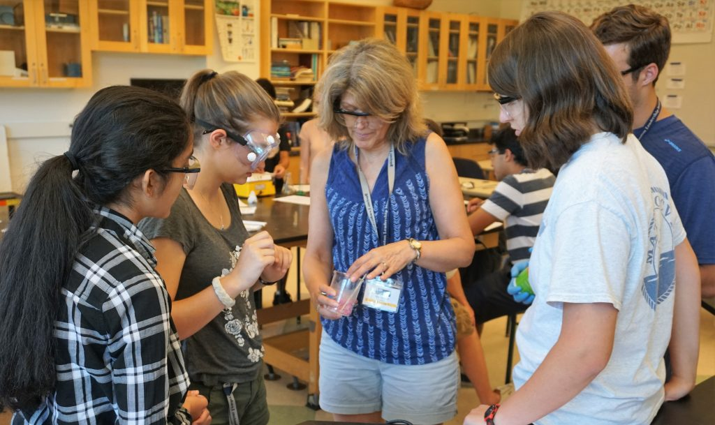 Ann Lambert teaches the Chemistry Research three-week program