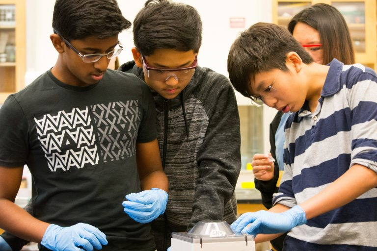 Students do an experiment in the AP Biology Edge one-week program