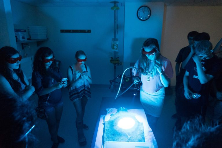 Students do a black light experiment in the Forensics three-week program