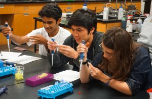 Students do an experiment in the Biomedical Research: Genetics and Clinical Trials three-week program