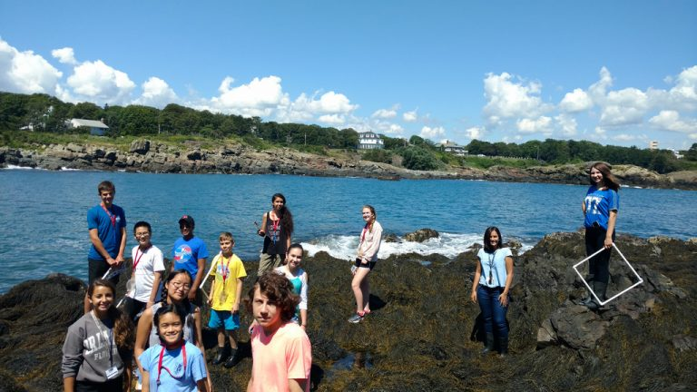 Students take a field trip to the Boston harbor in the Marine Biology one-week program