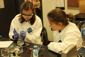 Students do a chemical experiment in the Intro to Biotech one-week program