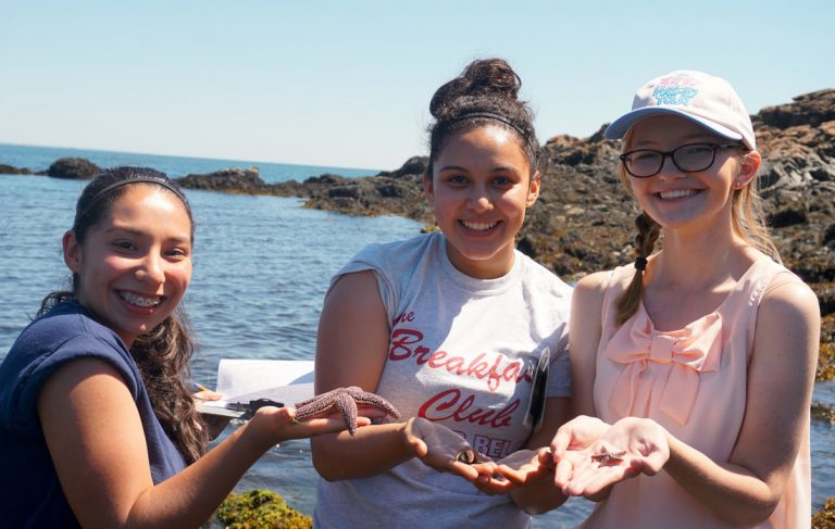 Students go to the Boston Harbor to work in an aquatic environment in the Marine Biology one-week program