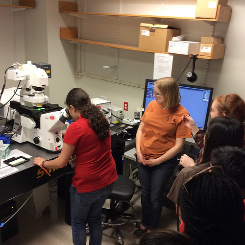 Students do research on a field trip in the Biomedical Research Contagious Disease three-week summer program