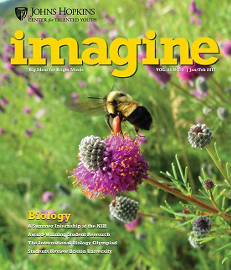 Cover of the January / February edition of the Imagine Magazine