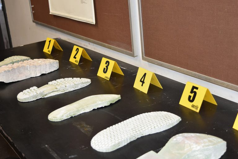 Students learn to identify footprints in the Forensic Science three-week summer science program