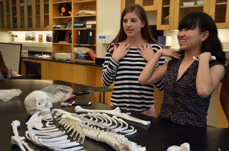 Students study a skeleton in the Anatomy and Surgical Research three-week summer medical program