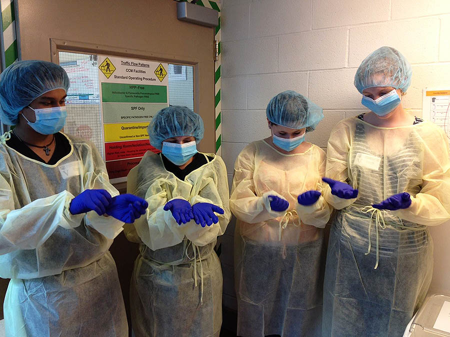 Students wear medical scrubs in the Biomedical and Surgical Research three-week summer medicine program