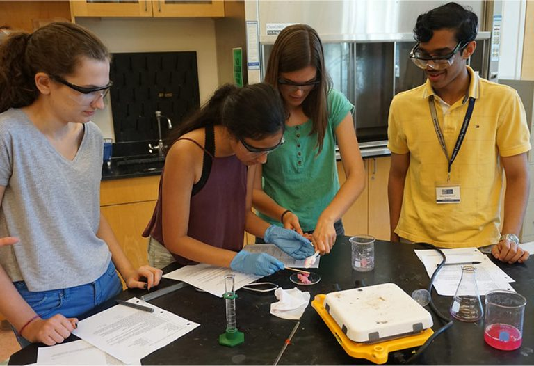 Students do an experiment in the Chemistry Research three-week summer program