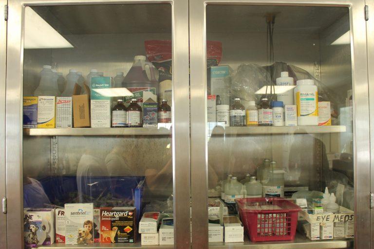 Veterinary Medicine Cabinet