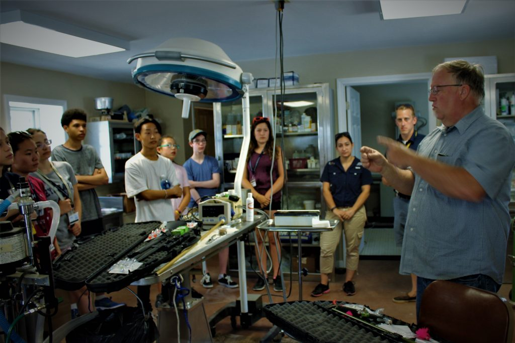 Students go to an examination room in the Veterinary Medicine three-week summer medical program