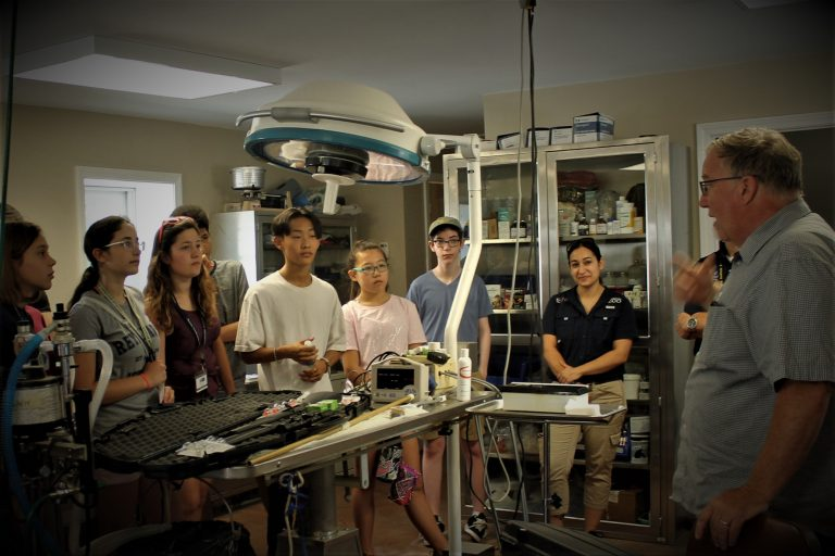 Students go to an examination room in the Veterinary Medicine three-week summer medical program