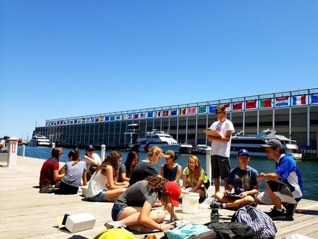 Students do research on a boardwalk in Boston in the Marine Biology three-week summer science program