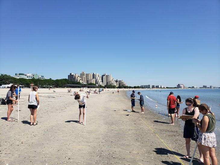 Students do research on a beach in Boston in the Marine Biology three-week summer science program