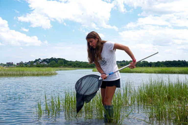 Student does fieldwork in a wetland area in the Marine Biology three-week summer science program
