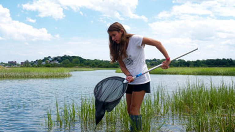 Student does fieldwork in a wetland area in the Marine Biology three-week summer science program