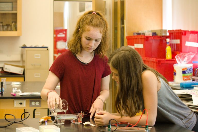 Students do genetic testing in the Genetics and Illness one-week summer science program