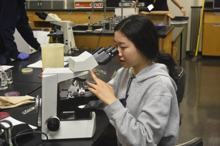 A student does an experiment in the Biomedical Research: Contagious Disease three-week summer medicine program