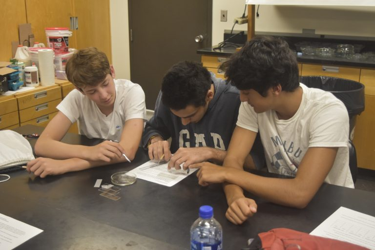 Students do research in the Biomedical and Surgical Research three-week summer medicine program
