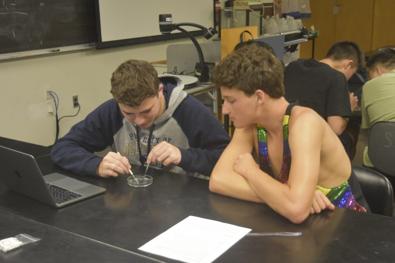 Students do an experiment in the Biomedical and Surgical Research three-week summer medicine program