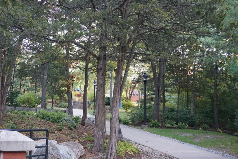 Picture of the Bentley University campus