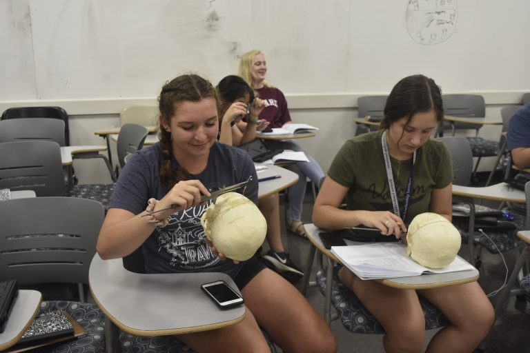 Students do research in the Forensic Science three-week summer science program