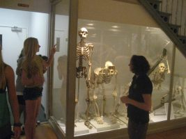 Students visit a museum in the Anatomy one-week summer program