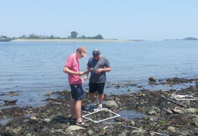 Students do research off the coast of Boston in the Marine Biology three-week summer science program